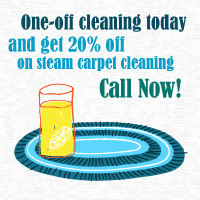 Get 20% Off on Steam Carpet Cleaning Now
